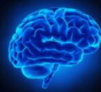 Cervello, cosa avviene in punto di morte
